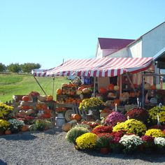 Explore the unique culture of the Amish with a vacation in central Ohio, home of the world's largest Amish community.
