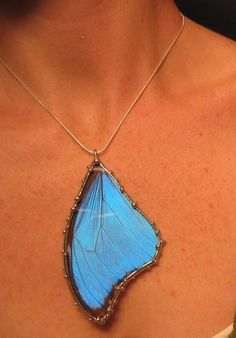 Large Blue Morpho Real Butterfly Necklace by neile on Etsy (Created with Naturally Expired Butterflies)