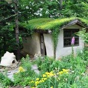 Down to Earth Design - A straw bale house with green roof
