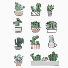 Idea Of Making Plant Pots At Home // Flower Pots From Cement Marbles // Home Decoration Ideas – Top Soop Tiny Cactus, Cactus Flower, Flower Pots, Cactus Doodle, Cactus Art, Cacti And Succulents, Cactus Plants, Cactus Drawing, Buch Design