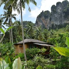 "✈Hitoshi shimotori✈ on Instagram: ""タイのクラビでジャングルリゾート。 A jungle resort at Krabi in Thailand! (2018.10.6)  #thailand #jungle #resort #krabi #travel #jungleland #resortwear…"" Garden Bridge, Outdoor Structures, Instagram"