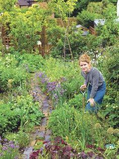 Fresh Permakultur Garten anlegen Tipps aus Hannes Permagarten Permaculture Gardens and Organic gardening