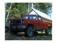 1974 Chevrolet Fleetside
