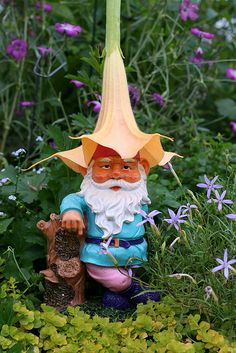 The garden is a great place for a little whimsy! Put a Gnome on it | Flickr - Photo Sharing!