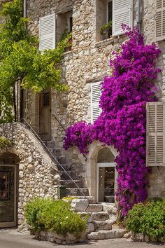 Colorful flowers and staircase lead to home in St. Paul de-Vence, France.