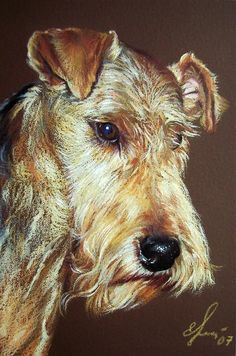 Elena Kolotusha    COLORED PENCIL GOUACHE   Airdale Terrier