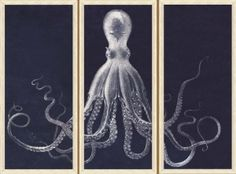 Lord Bodner's Octopus Study Triptych in Blue Artwork - MAGNIFICENT!