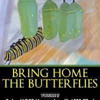 Raising Monarch Butterflies Guide- Butterfly Gift Idea 6
