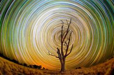 Amazing star trails over the Aussie outback. The swirling spectacles were snapped using long exposure lenses on a Nikon and a Nikon camera by Australian photographer Lincoln Harrison. Night Time Photography, Time Lapse Photography, Exposure Photography, Lincoln, Long Exposure Stars, How To Photograph Stars, Night Sky Photos, Star Trails, Freebies