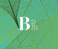 Spa Branding, Behance, Wellness Spa, Graphic Design Branding, Photoshop, Gallery, Illustration, Beauty, Projects