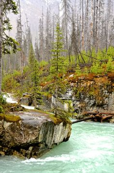 Going here tomorrow :) Marble Canyon, Kootenay National Park, Canada Canada National Parks, Banff National Park, Places In Usa, Places To See, The Beautiful Country, Beautiful World, Marble Canyon, Vancouver City, Alaska