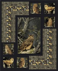 Sewing Quilts Night Owls Quilt Pattern (Intermediate) - The Night Owls Quilt Pattern creates a dramatic setting for a beautiful panel. Fabric shown is Majestic Woods by Andover Fabrics. Owl Quilts, Bird Quilt, Animal Quilts, Horse Quilt, Baby Quilts, Owl Quilt Pattern, Quilt Block Patterns, Quilt Blocks, Fabric Panel Quilts