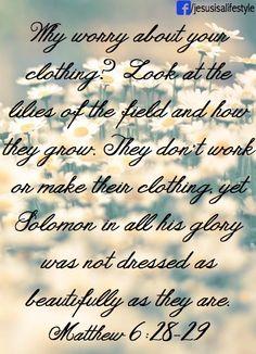 Mathew 6:28-29 - facebook.com/jesusisalifestyle