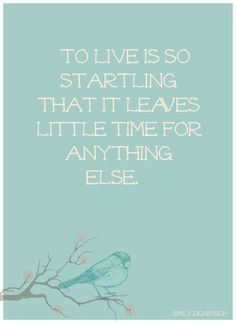 To live is so startling that it leaves little time for anything else. Emily Dickenson