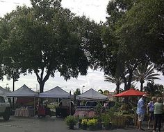 The Sand Lake Road Farmer's Market is located at the Dr. Phillips Marketplace in South Orlando. Sand Lake, Farmers Market, Orlando, The Neighbourhood, Corner, Florida, Marketing, Check, Orlando Florida