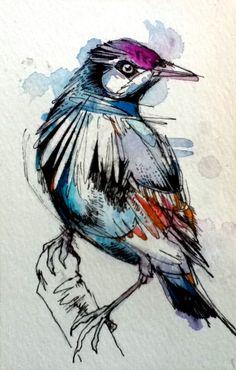 """Grackle- 4""""x6"""" Original Ink & Watercolor. $30.00, via Etsy."""