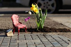 """Guerilla gardener Steve Wheen has been gardening for years and has always thought that potholes make the perfect imperfect pot; he's all right with the idea of living with the urban landscape's imperfections. He says, 'If there weren't potholes, I'd have no place for my little gardens.'  by thepotholegardener.com"