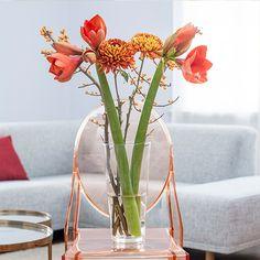 Amaryllis, Chrysanthemen, Ilex Flowers by BLOOMY DAYS