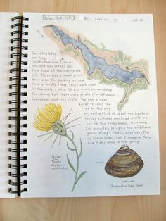 The Living Page :: Nature Journals -- Yes! Even Mom keeps a nature journal!