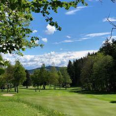 Was ist auf deiner persönlichen Wunschliste ganz weit oben? ⛳️ Golf vereint packenden Sport, spielerisches Vergnügen, Technik, Natur und Lebensfreude zu einem einzigartigen Erlebnis. 🏌️♀️🏌️♂️ Foto: Jutta Kleinberger #Golfplatz #kgc #Dellach #Wörthersee #golf #sport #golfing #golfcourse #golflife #golfer #kgcdellach #golfclubs Golf Sport, Golfer, Golf Courses, Instagram, Wish List, Joie De Vivre, Nature