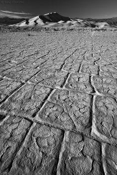 desert paradigm | http://www.thenaturephotography.com/image/1169/desert_paradigm/