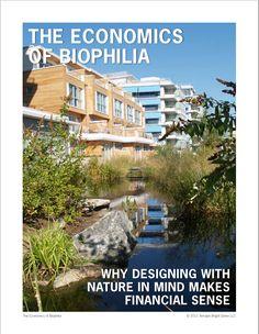 Terrapin Bright Green's report on The Economics of Biophilia.