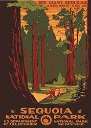 vintage national parks poster