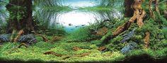 Top 10 aquascapes in 2008 ADA Aquatic Plants Layout Contest - 4th Place