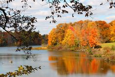 Lake Newport - Autumn VI by Jack W. Pearce, via Flickr