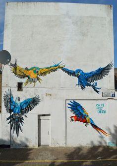 """""""Perroquets"""" par Louis Michel Masai. Il raconte que son échelle n'était pas assez grande pour dessiner un couple de perroquets supplémentaire sur le haut du mur ^^"""