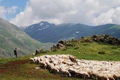 El blog de P.S.: Go!: 100% Xisqueta The 100, Mountains, Nature, Blog, Travel, Naturaleza, Viajes, Blogging, Destinations