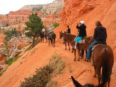 Horse riding in Bryce Canyon National Park, Utah