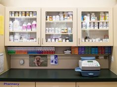 Lafayette CA Veterinary Hospital Photo Tour