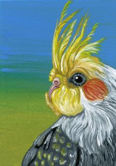 Buy ACEO ATC Original Cockatiel Bird Pet Art-Carla Smale, Gouache painting by carla smale on Artfinder. Discover thousands of other original paintings, prints, sculptures and photography from independent artists.