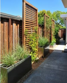 Trellises like these with jasmine would be so nice..I love the planters, but maybe different plants in them. Hydrangeas???????????