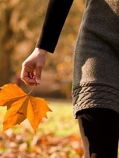 | October | Collecting Memories