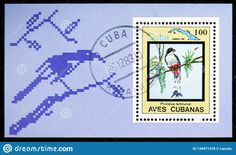 Stamp Printing, Moscow Russia, Cuban, Birds, Frame, Prints, Decor, Picture Frame, Decoration