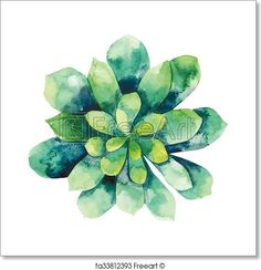 Watercolor green succulent - Artwork - Art Print from FreeArt.com