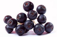 černá jeřabina - aronie Natural Healing, Blueberry, Berries, Stock Photos, Fruit, Image, Food, Syrup, Berry
