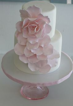 feminine girly masterpiece of a cake. From sweet and saucy