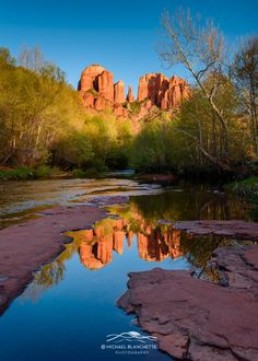 Cathedral Rock Reflection - Vertical - Cathedral Rock is a famous landmark on the Sedona, Arizona skyline, and is one of the most-photographed sights in Arizona. Cathedral Rock is located in the Coconino National Forest in Yavapai County. The summit elevation of Cathedral Rock is 4,967 feet (1,514m). Geologically, Cathedral Rock is carved from the Permian Schnebly Hill formation, a redbed sandstone formed from coastal sand dunes near the shoreline of the ancient Pedregosa Sea. This photo…