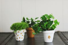 St. Patrick's Day is only 6 days away! And we decided that this week, in addition to our normal posts, we would post a mini St. Patrick's Day DIY each afternoon. They're all prett…