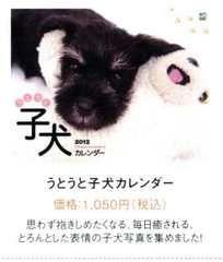 It is 2012 puppy calendar size
