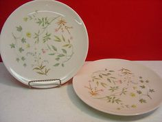 Shenango-China-Peter-Terris-APRIL-Two-Dinner-Plates
