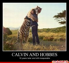 calvin and hobbes :)