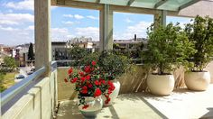 terrace in Altamura, Bari