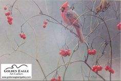 Robert Bateman High Bush Cranberries  http://www.goldeneagleartgallery.com