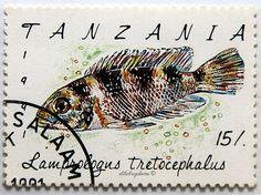 Tanzania.  TRICERATOPS.  Scott 760 A119, Issued 1991 Oct 28, Perf. 12 x 12 1/2, 15. /ldb.
