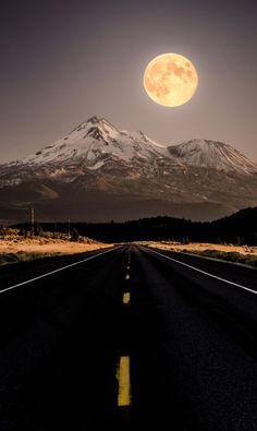 Journey under the moon...
