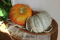 2 pumpkins in dough bowl